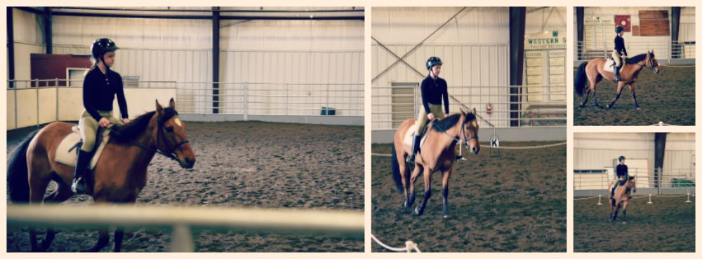 Indoor Arena Ride