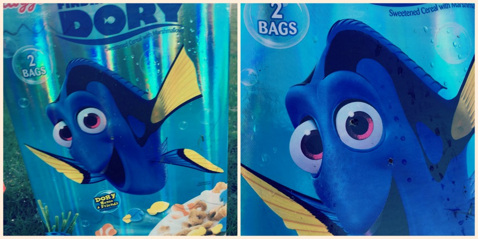 Dory Target